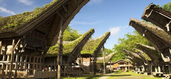 Viajar a Sulawesi