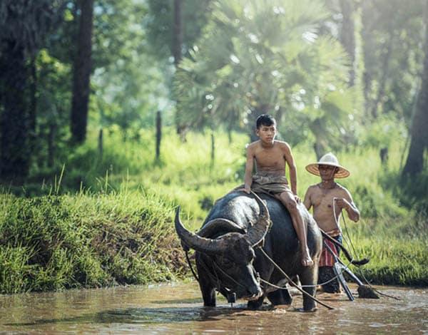 Viaje a Indonesia Completo